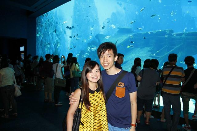 RWS S.E.A Aquarium 414