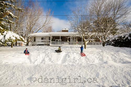 Front yard sledding