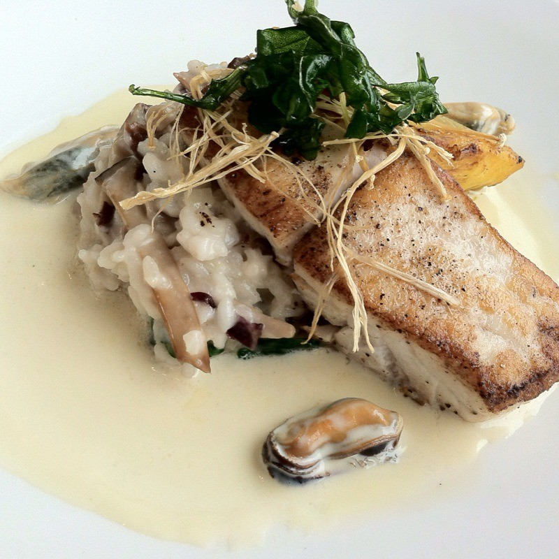 Pan Roasted Corvina @ Cliff House