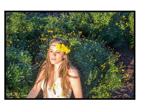 flowers sunset portrait woman girl yellow daisies garden profile blossoms fairy yellowflowers selfshot womaningarden womaninflowers girlingarden