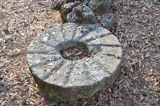 Millstone at Poinsett State Park