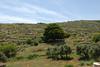 Kreta 2011-1 183