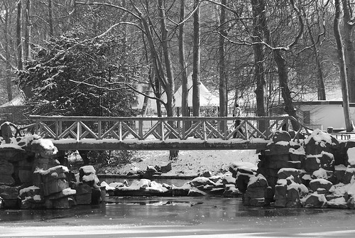 Le pont du Parc Josaphat - The bridge of the Josaphat Park - On Explore  27/1/2013 - Rank 131