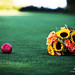 The Red Ball and the Sunflowers Fell in Love <3 by LAURA~MATESKY