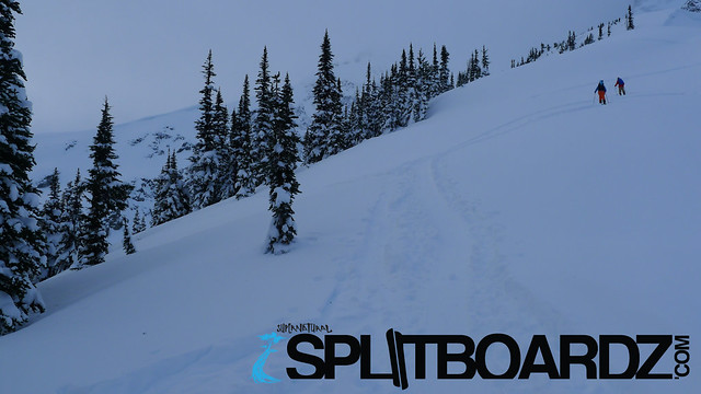 splitboarding with Splitboardz.com