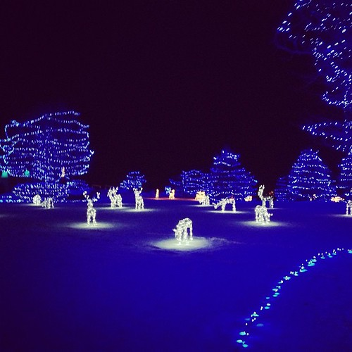 All blue #christmaslights