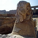 Sphinx statue at Karnak Temple, Luxor, Egypt