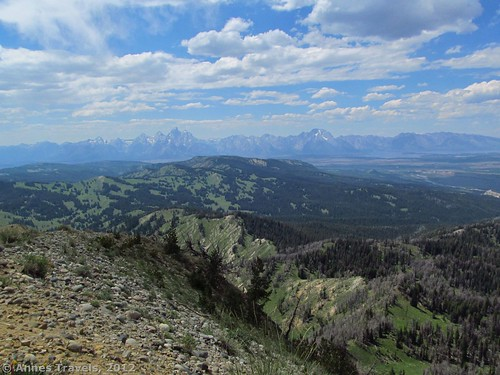 The Teton Range from Mount Leidy, Bridger-Teton National Forest, Wyoming