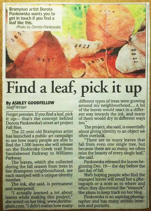 Find a Leaf, numbered leaves, stamped leaves