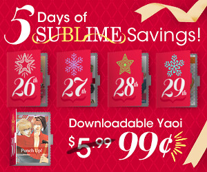 SUB_2012Holiday_advent_300x250_05