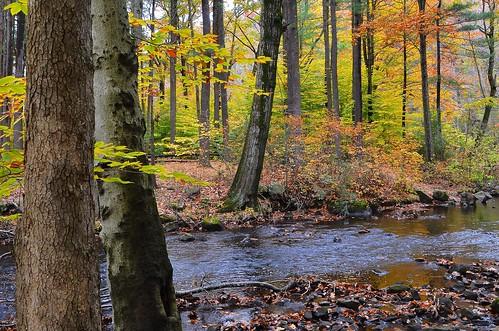 statepark autumn usa connecticut hamden sleepinggiant 06518 johnjmurphyiii