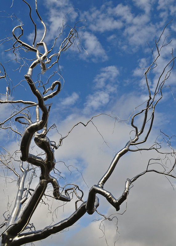 'Graft Roxy' Paine