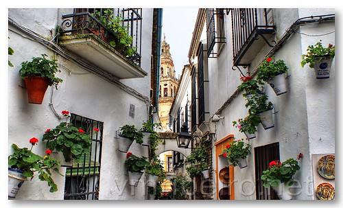 Rua das Flores by VRfoto