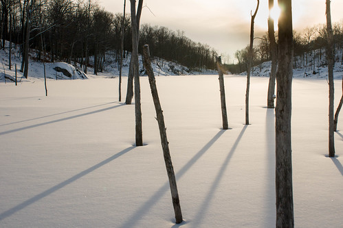 sunset snow swamp