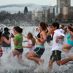 Polar Bear Swim 2013