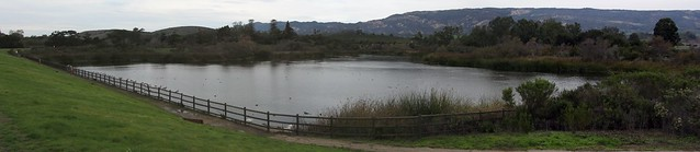 IMG_4815_5 121225 Lake Los Carneros Goleta mountains ICE rm persp stitch99