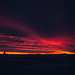 Sask Sunset by Preston Kanak Online