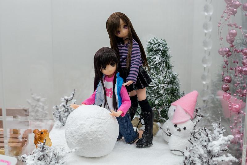 AZONE_LS_Akihabara_20130105-DSC_9870