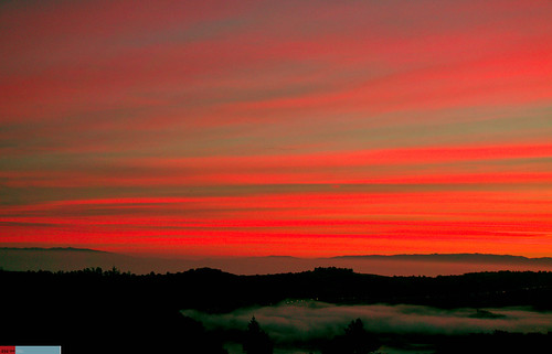 red orange colors silhouette northerncalifornia fog clouds sunrise relax quiet peace peaceful serenity bayarea selfreflection serene norcal peninsula vistapoint sanmateocounty peaceofmind highway35 redclouds marinate dramaticclouds highway92 highclouds dramaticsunrise northerncaliforniasunrise hoveringfog norcalphotographers