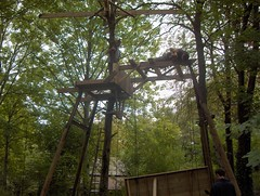 Augerville Treehouse