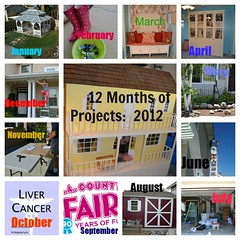 12 Months of House Projects: 2012