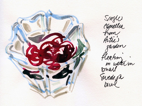 January journal pages: camellia vignette