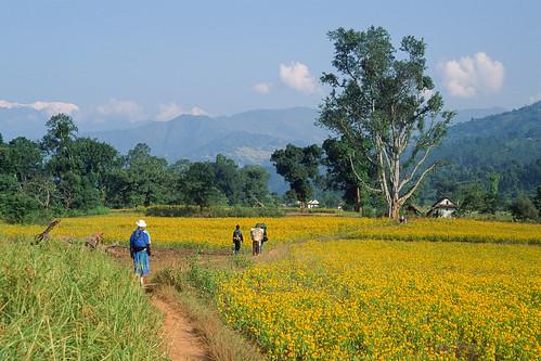 nepal velvia khandbari easternregion
