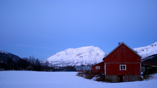 red stable in norway
