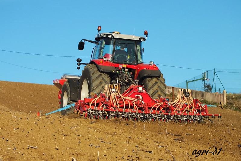 wheat seedingwheat seeding