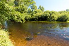 Le fond du fleuve