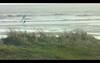 Screen Shot 2012-12-17 at 05.38.43