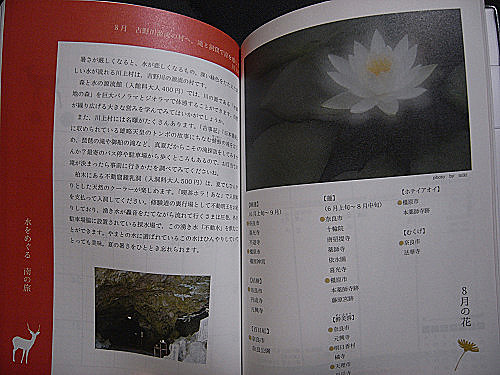 奈良旅手帖2013-03