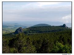 2011-06-06_Pentes du Mont Mézenc