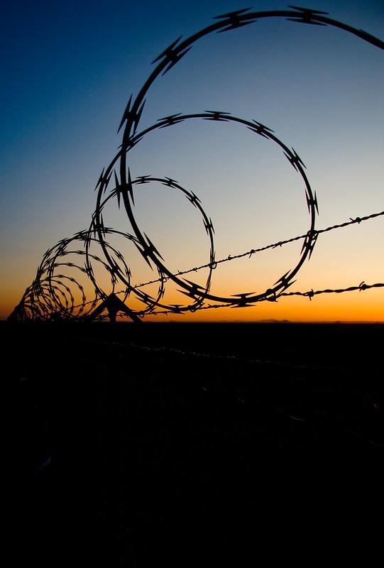 Barbed Wire Sunrise