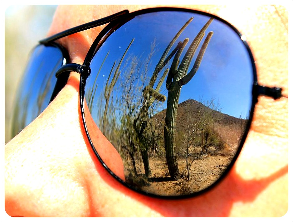 jess sunglass reflection saguaros