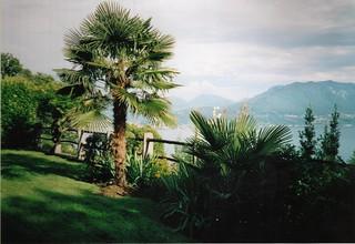 Lago Maggiore View 1