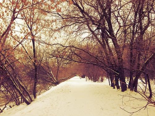 An usual daywalk by foma_kamushken