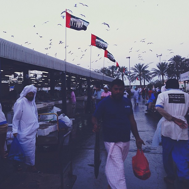 There is life and of course fishes over Dubai fish market to explore every friday!