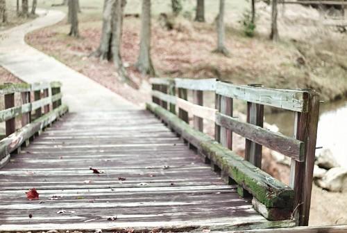 bridge path shallowdof mrgreenjeans gaylon canonef50mmf18ii gaylonkeeling