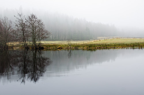 trees sky mist nature water field misty fog forest fence reflections river landscape mirror wooden nikon day sweden foggy swedish fritsla d7000 häggån