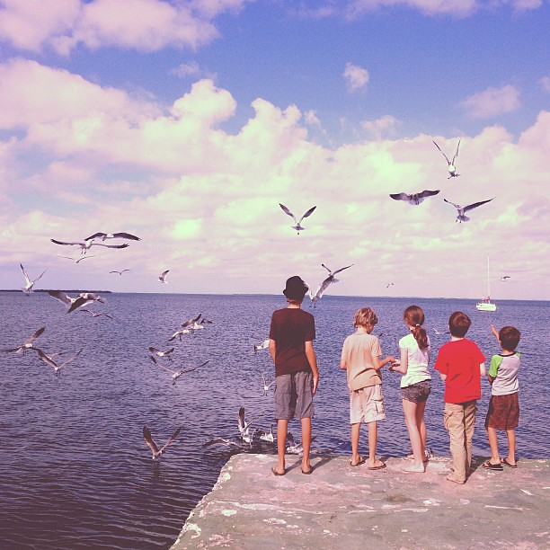 Feeding the birds. #keylargo #thebigchill13