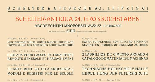 Schelter-Antiqua