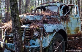Old Car City 138