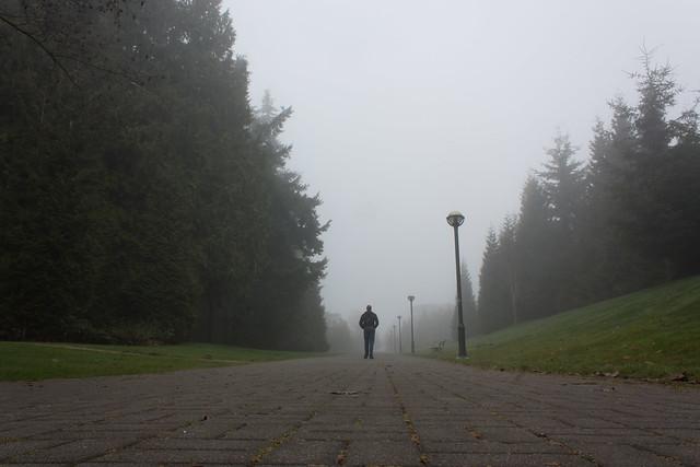 A quiet walk in the fog