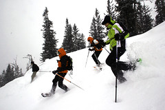 snowshoe, ski equipment, winter sport, nordic combined, winter, skiing, sports, snow, freeride, ski touring, extreme sport, downhill, nordic skiing,