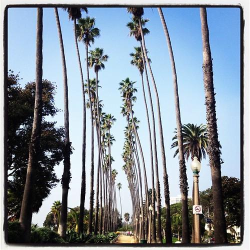 Santa Monica!!