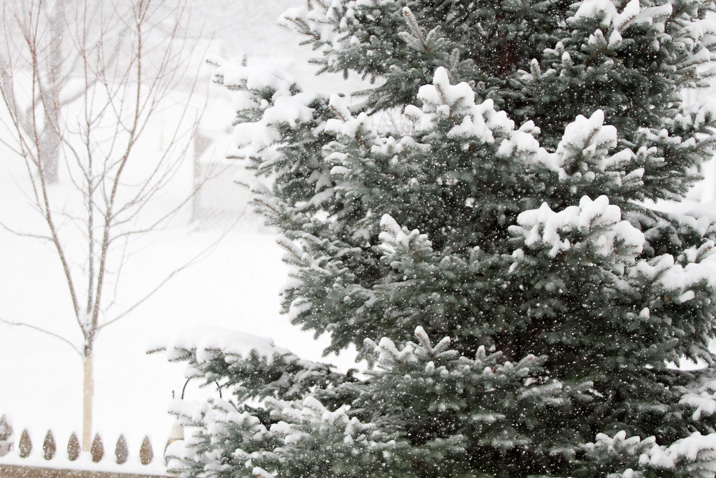 December 9th Snow Storm