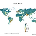 Global manure map