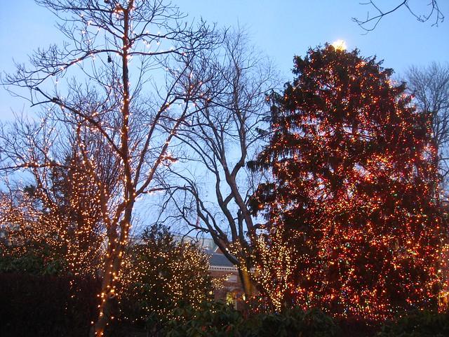 Christmas in Princeton - 15