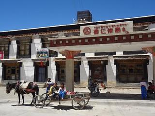 Carruagens de cavalos em Tingri Tibete